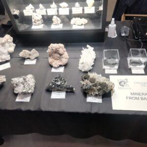 49th_Euro_Mineral_expo_2020_Torino_21